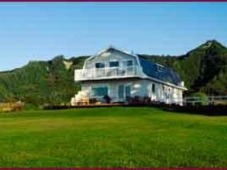 Alaska by the Sea, yard and house - Alaska by the Sea: 4 bedrooms, Glacier Views - Homer - rentals