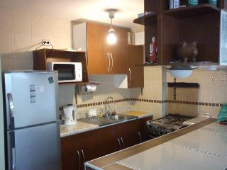 Very well located, steps from flagship sectors. - Santiago vacation rentals