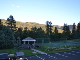 Nice Condo with Deck and Internet Access - Durango vacation rentals