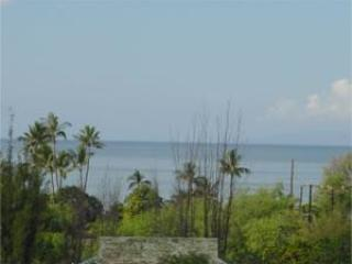 View from unit - Exec Upper Ohana: 1-bed, 1-bath Ocean View Cottage - Kihei - rentals