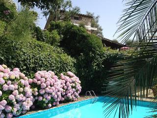 Pietrasanta - 86052001 - Pietrasanta vacation rentals