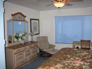 Coyote Lakes Golf Course Home in Surprise Arizona - Surprise vacation rentals