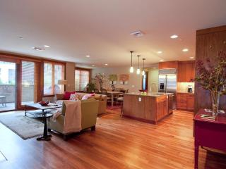 Sun Valley - Luxury Condo in heart of Ketchum - Ketchum vacation rentals