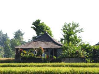 Jepun Cottage, Ubud - (pool, wifi, ricefield view) - Ubud vacation rentals
