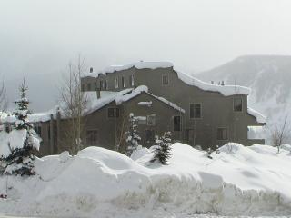 1 Bedroom + Loft/2 Bath Mountain Edge Condo - Crested Butte vacation rentals