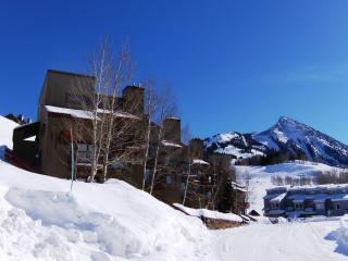 1 Bedroom/2 Bath Buttes Condominium - Crested Butte vacation rentals