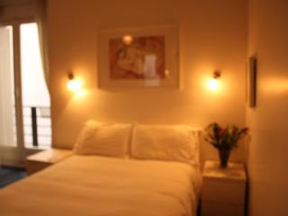 Lovely Apartment near  Eiffel Tower with Garage. - 8th Arrondissement Élysée vacation rentals
