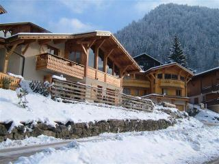6 bedroom Chalet with Deck in Morzine - Morzine vacation rentals