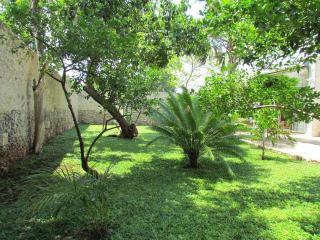 Casablanca living, 2 BR modern, colonial house - Merida vacation rentals