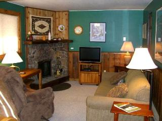 Romantic 1 bedroom Crested Butte House with Private Indoor Pool - Crested Butte vacation rentals
