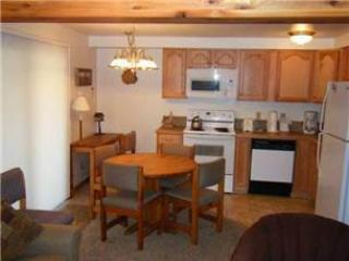 Three Seasons #332-A - Image 1 - Crested Butte - rentals