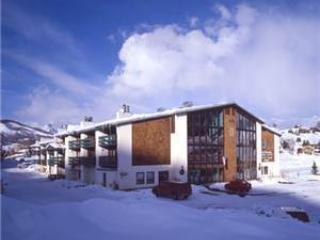 Bright Crested Butte House rental with Shared Outdoor Pool - Crested Butte vacation rentals