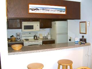 Chateaux #302 - Crested Butte vacation rentals