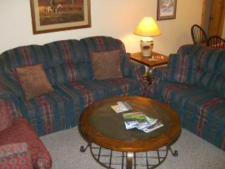 Chateaux #508 - Crested Butte vacation rentals