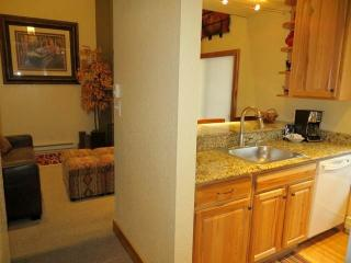 2 bedroom Condo with Hot Tub in Crested Butte - Crested Butte vacation rentals