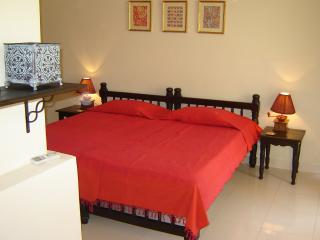 Luxurious 3 Bedroom Row Villa  in Goa near Beach - Benaulim vacation rentals