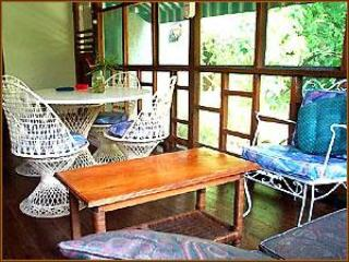 New, Spacious, 2 Bedroom Nirvana on the Beach - Image 1 - Negril - rentals