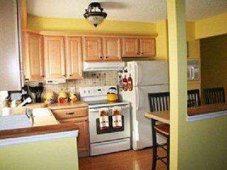 Beautiful Mastope Community- POOL and BEACH - Lackawaxen vacation rentals