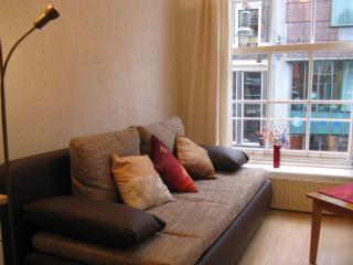 Tripadvisor put the property online without permis - Amsterdam vacation rentals