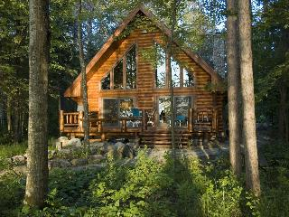Log Home On Lake Chippewa 3 bed 2 bath Eaglesnest - Hayward vacation rentals