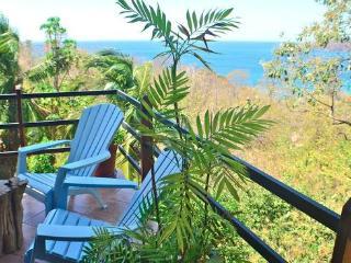 Casa Jungle - Real Tropical Paradise Experience - Playa Flamingo vacation rentals