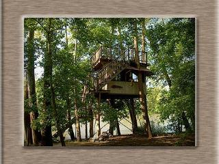 Sanctuary Tree House - Luray vacation rentals