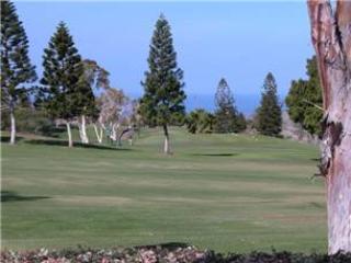 Waikoloa Villas E-106 $75/N-7min til 12/14/14 - Waikoloa vacation rentals