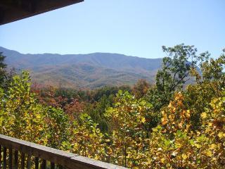 Cedar Ridge - Gatlinburg vacation rentals