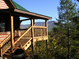 1 bedroom Cabin with Deck in Sevierville - Sevierville vacation rentals