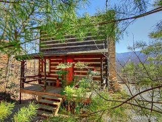 Little Bear - Hartford vacation rentals