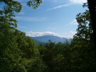 Tranquility - Gatlinburg vacation rentals