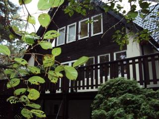 Magdalenka - house with garden in the forest - Warsaw vacation rentals