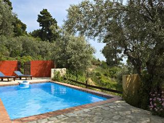 Private pool villa ideal for a private get-away! - Skopelos vacation rentals