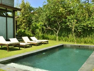 Villa Jati Manis - Kuta vacation rentals