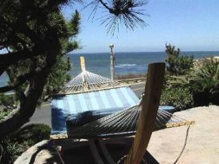 Villa Magnifica - Pacific Beach vacation rentals