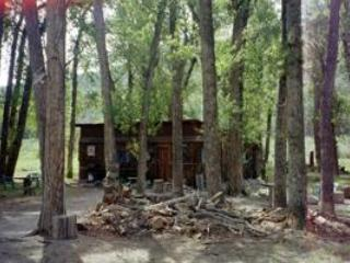 Thumper of Bunnylane Cabins (Shared Bathhouse) - Nathrop vacation rentals