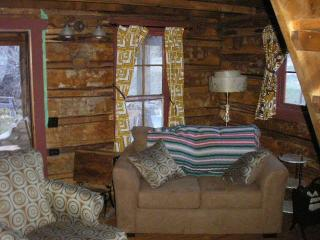 Nice Cabin with Outdoor Dining Area and Short Breaks Allowed - Nathrop vacation rentals