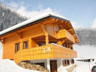 16p luxury chalet opposite skislope in Chatel (Fr) - Chatel vacation rentals