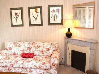 Constantine, 3 Bedroom French Riviera Vacation Apartment - Cannes vacation rentals