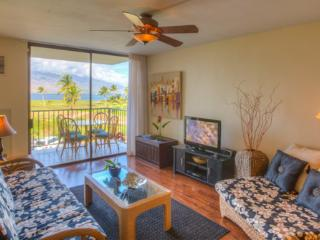 Summer Special May to Aug $110.00 (6nt) Beautiful  Beachfront Condo, Huge View - Kihei vacation rentals