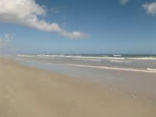 New Smyrna Beach - Seawoods Condo with Veranda - New Smyrna Beach - rentals
