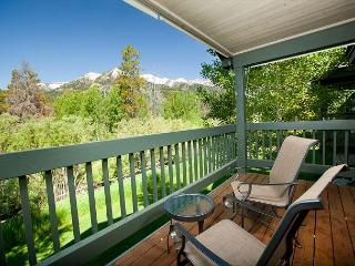 Perfect Condo with Deck and Internet Access - Wilson vacation rentals