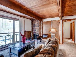 Chateau Aspen 11 - Aspen vacation rentals