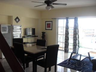 Fully Furnished 2 bedrooms Penthouse in Gazcue - Santo Domingo vacation rentals