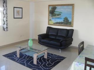 Pretty 2 bedrooms apartment for rent in Gazcue - Santo Domingo vacation rentals