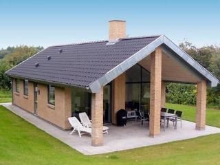 Toftum Bjerge ~ RA17180 - Struer vacation rentals