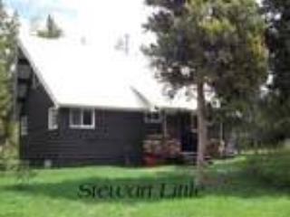 Stewart Little - Image 1 - Island Park - rentals