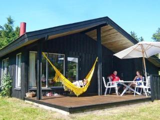 Saltum Strand ~ RA14047 - Saltum vacation rentals