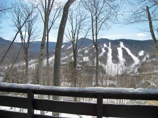 K015C- Managed by Loon Reservation Service - NH M&R:056365/Business ID:659647 - Lincoln vacation rentals
