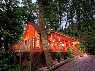 Breathtaking 100 Mile Mountain/City Views-5 Mins. to Pkwy in Pigeon Forge - Dandridge vacation rentals
